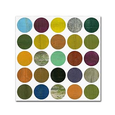 Trademark Fine Art Michelle Calkins 'Rustic Rounds 4.0' 14