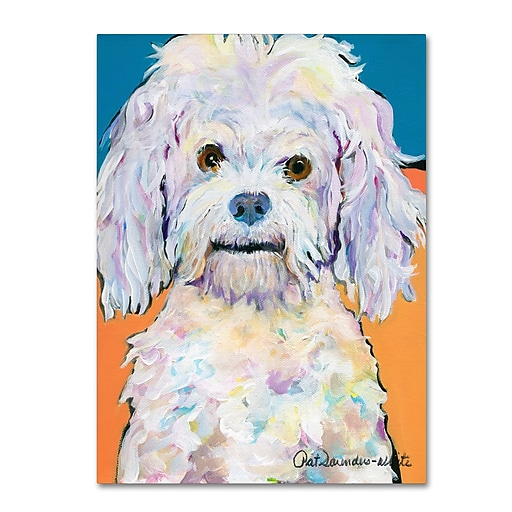 "Trademark Fine Art Pat Saunders-White 'Lulu' 14"" x 19"" Canvas Stretched (190836060993)"