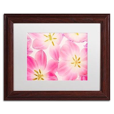 Trademark Fine Art Cora Niele 'Three Cerise Pink Tulips' 11