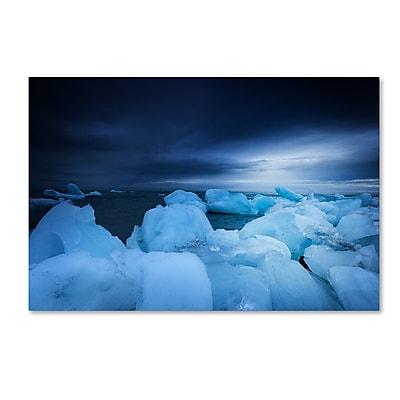 Trademark Fine Art Philippe Sainte-Laudy 'Blue Monday' 12