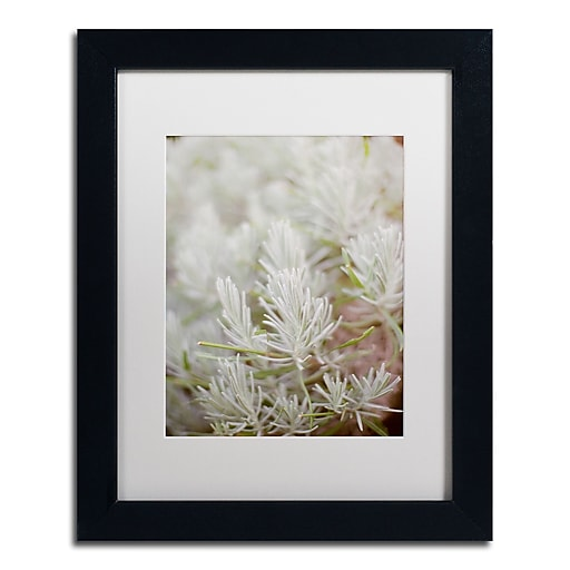 "Trademark Fine Art Ariane Moshayedi 'Rosemary Bush' 11"" x 14"" Matted Framed (190836274208)"