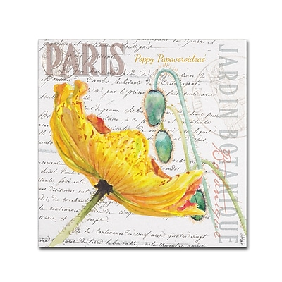 Trademark Fine Art Jennifer Redstreake 'Paris Botanique Yellow Poppy' 18
