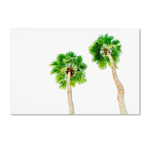 "Trademark Fine Art Ariane Moshayedi 'Palms 5' 12"" x 19"" Canvas Stretched (190836272266)"