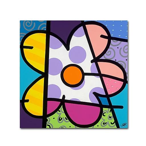 "Trademark Fine Art Roberto Rafael 'Big Flower I' 18"" x 18"" Canvas Stretched (190836279593)"
