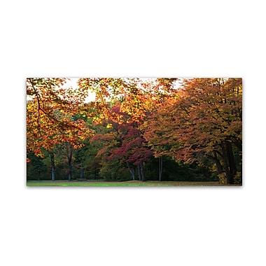 Trademark Fine Art Kurt Shaffer 'Brilliant Autumn in the Park' 10