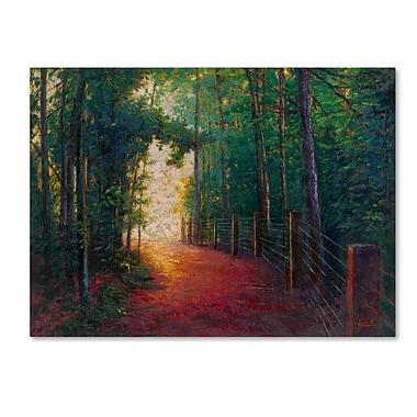 Trademark Fine Art Daniel Moises 'Misty Trail' 14