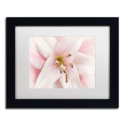 Trademark Fine Art Cora Niele 'Pink Lily' 11