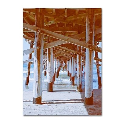 Trademark Fine Art Ariane Moshayedi 'Under Pier 2' 14