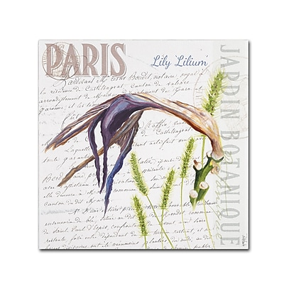 Trademark Fine Art Jennifer Redstreake 'Paris Botanique Lily Purple' 14