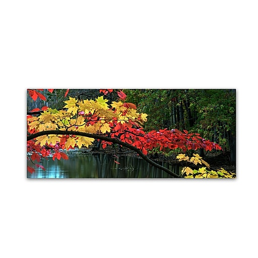 "Trademark Fine Art Kurt Shaffer 'Autumn Red and Gold' 10"" x 24"" Canvas Stretched (886511964006)"