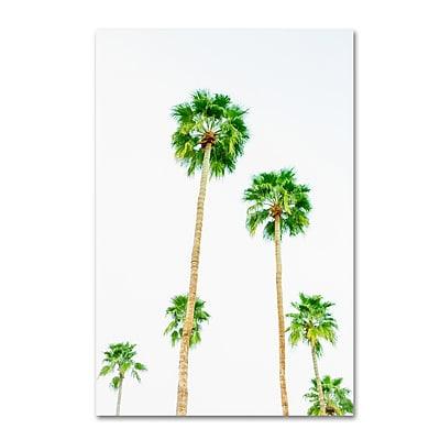 Trademark Fine Art Ariane Moshayedi 'Palms 6' 12