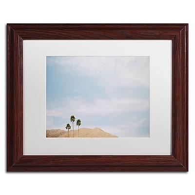 Trademark Fine Art Ariane Moshayedi 'Three Palms' 11