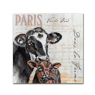 Trademark Fine Art Jennifer Redstreake 'Dans la Ferme Cow' 18