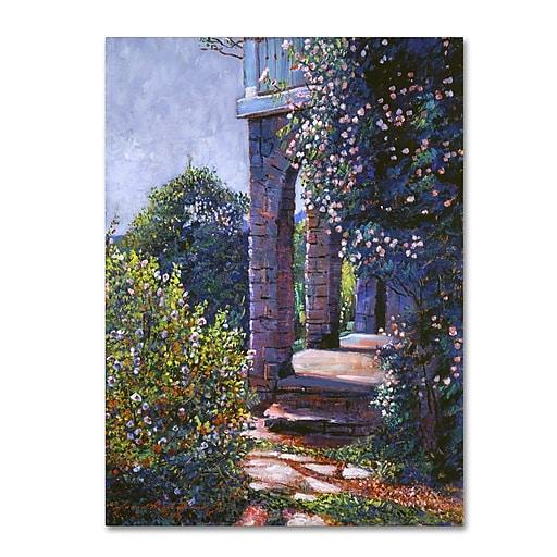 "Trademark Fine Art David Lloyd Glover 'Climbing Roses' 14"" x 19"" Canvas Stretched (190836227105)"