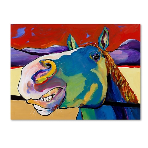 "Trademark Fine Art Pat Saunders-White 'Eye to Eye' 14"" x 19"" Canvas Stretched (190836059713)"