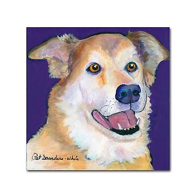 Trademark Fine Art Pat Saunders-White 'Burt' 14