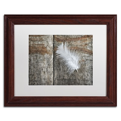 Trademark Fine Art Cora Niele 'Feather on Wood II' 11
