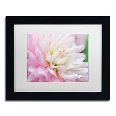 Trademark Fine Art Cora Niele 'White and Pink Dahlia' 11