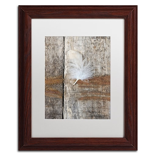 """Trademark Fine Art Cora Niele 'Feather on Wood I' 11"""" x 14"""" Matted Framed (190836255504)"""