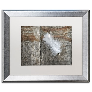 Trademark Fine Art Cora Niele 'Feather on Wood II' 16