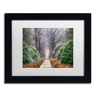 Trademark Fine Art Cora Niele 'Rhododendron Lane' 11