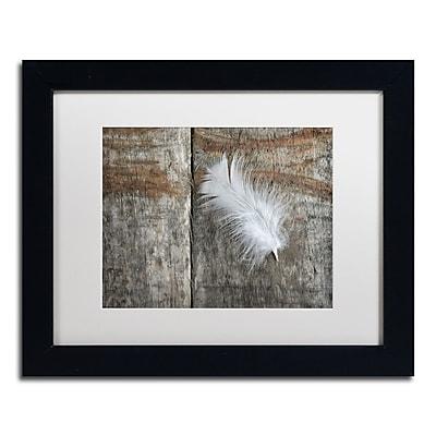 Trademark Fine Art Cora Niele 'Feather on Wood II' 11
