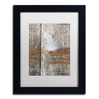 Trademark Fine Art Cora Niele 'Feather on Wood I' 11
