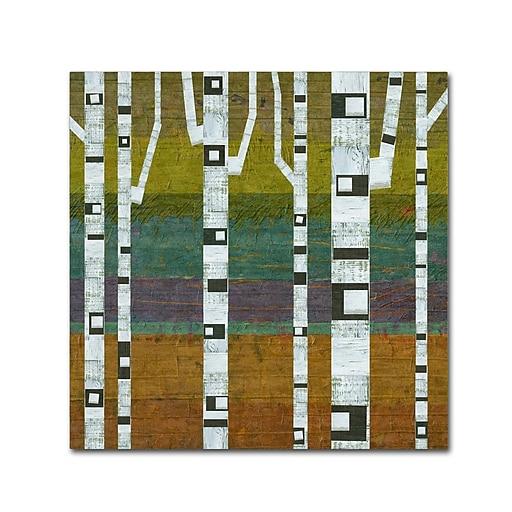 """Trademark Fine Art Michelle Calkins 'Birches 2.0' 14"""" x 14"""" Canvas Stretched (190836070541)"""