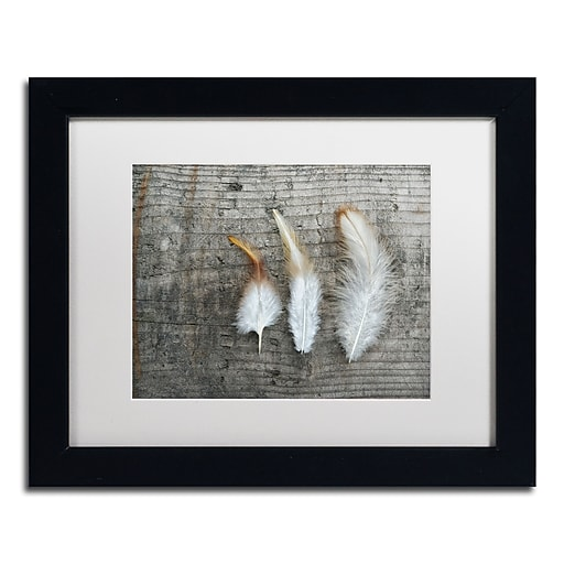 """Trademark Fine Art Cora Niele 'Three Feathers on Wood' 11"""" x 14"""" Matted Framed (190836255665)"""