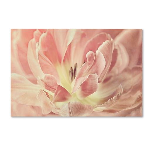 "Trademark Fine Art Cora Niele 'Vintage Tulip' 12"" x 19"" Canvas Stretched (190836253029)"
