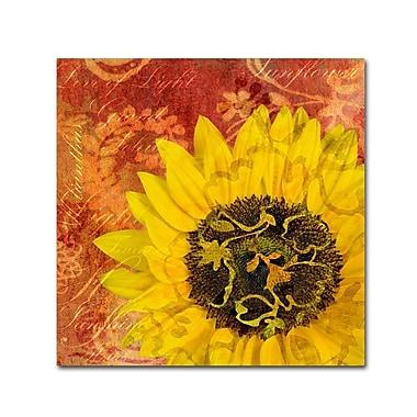 Trademark Fine Art Cora Niele 'Sunflower - Love of Light' 14