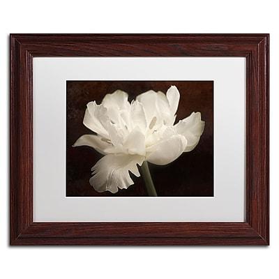 Trademark Fine Art Cora Niele 'White Tulip II' 11
