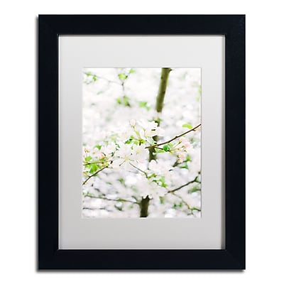 Trademark Fine Art Ariane Moshayedi 'White Cherry Blossom Tree 5' 11