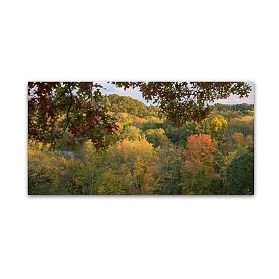 Trademark Fine Art Kurt Shaffer 'Late Afternoon October Color' 10
