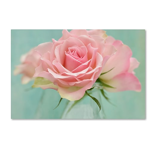 """Trademark Fine Art Cora Niele 'Pink Roses' 12"""" x 19"""" Canvas Stretched (190836260225)"""