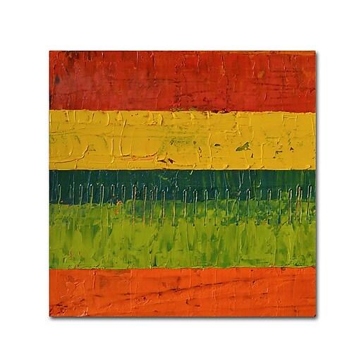"Trademark Fine Art Michelle Calkins 'Fence' 14"" x 14"" Canvas Stretched (190836100460)"