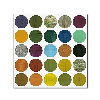 Trademark Fine Art Michelle Calkins 'Rustic Rounds 5.0' 14