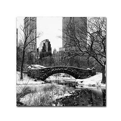 Trademark Fine Art Philippe Hugonnard 'Gapstow Bridge Central Park' 18