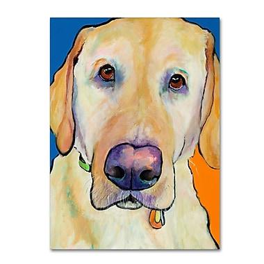 Trademark Fine Art Pat Saunders-White 'Spenser' 14
