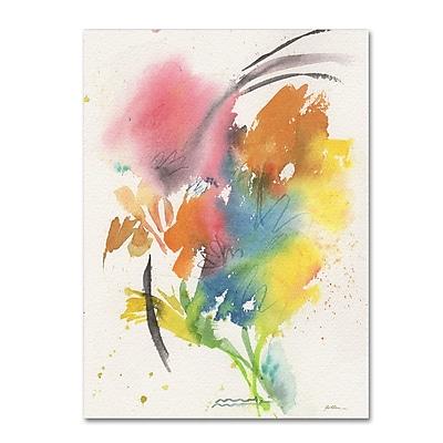Trademark Fine Art Sheila Golden 'Rainbow Bouquet' 14