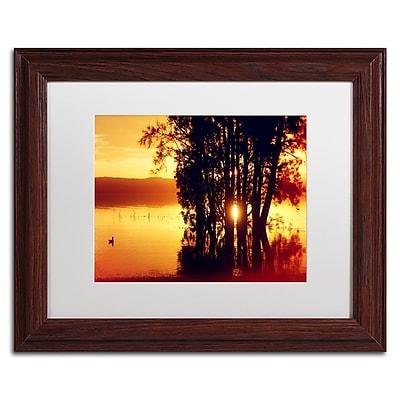 Trademark Fine Art Beata Czyzowska Young 'Lonely at Sunset' 11