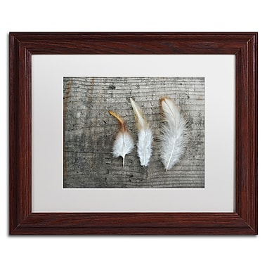 Trademark Fine Art Cora Niele 'Three Feathers on Wood' 11