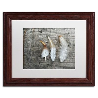 Trademark Fine Art Cora Niele 'Three Feathers on Wood' 11