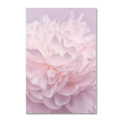 Trademark Fine Art Cora Niele 'Pink Peony Petals I' 12