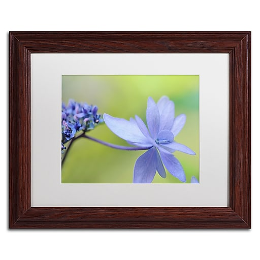 "Trademark Fine Art Cora Niele 'Blue Hydrangea' 11"" x 14"" Matted Framed (190836246922)"
