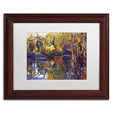 Trademark Fine Art David Lloyd Glover 'Tapestry Reflection' 11