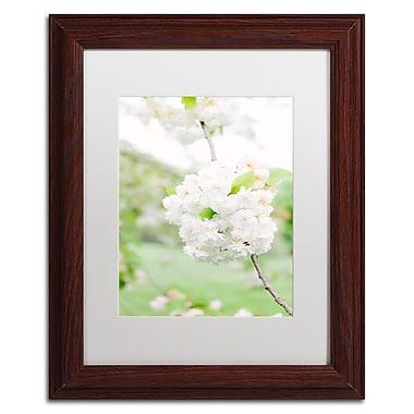 Trademark Fine Art Ariane Moshayedi 'White Cherry Blossoms 4' 11