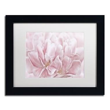 Trademark Fine Art Cora Niele 'Double Pink Tulip' 11