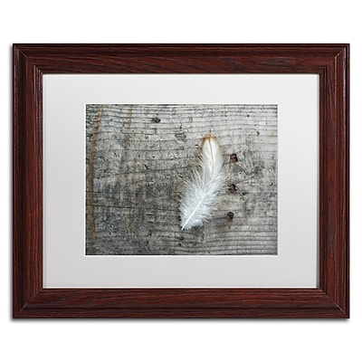 Trademark Fine Art Cora Niele 'Feather on Rough Wood' 11