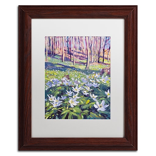 """Trademark Fine Art David Lloyd Glover 'Anemones in the Meadow' 11"""" x 14"""" Matted Framed (190836228041)"""
